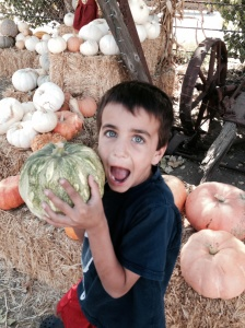 ty with pumpkin